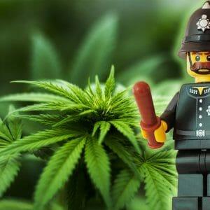 Zur Reaktion der Polizeigewerkschaften auf die Legalize-Debatte